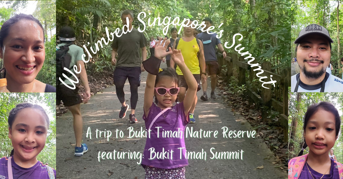 A Trip to the Summit of Singapore